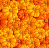 Seamless pattern with pumpkins. Royalty Free Stock Image
