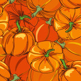Seamless pattern of pumpkins Stock Photography