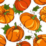 Seamless pattern of pumpkins Royalty Free Stock Image