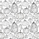 Seamless pattern of pumpkins Royalty Free Stock Photos