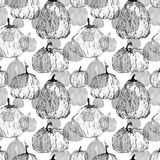 Seamless pattern of pumpkins Stock Photography