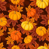 Seamless pattern with pumpkins and leaves. Stock Images