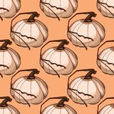 Seamless pattern with pumpkins stock illustration