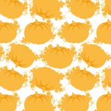 Seamless pattern of pumpkins on a white background Stock Image