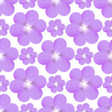 Seamless pattern with purple flowers Royalty Free Stock Photos