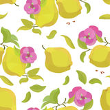 Seamless pattern quince and flower Royalty Free Stock Image