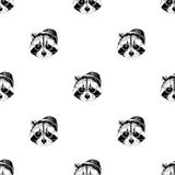 Seamless pattern with raccoons hipsters. Seamless pattern with hand drawn dressed up raccoons hipsters. Vector illustration Stock Image
