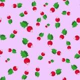 Seamless pattern with radish Stock Photo