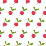 Seamless pattern with radish Royalty Free Stock Image