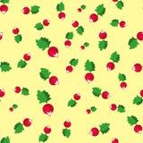 Seamless pattern with radish Royalty Free Stock Photo