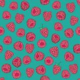 Seamless pattern of raspberries Royalty Free Stock Photos