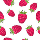 Seamless Pattern of Raspberries Royalty Free Stock Image