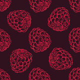 Seamless Pattern of Raspberries, Fruit Pattern. Vector Illustration Royalty Free Stock Photo