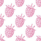 Seamless Pattern of Raspberries, Fruit Pattern. Vector Illustration Royalty Free Stock Photography