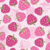 Seamless pattern with raspberry Royalty Free Stock Image