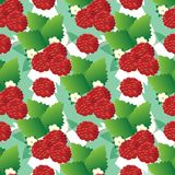 Seamless pattern of raspberry berries on branches with leaves and flowers stock illustration