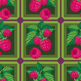 Seamless pattern with of raspberry Royalty Free Stock Photo