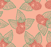 Seamless pattern with raspberry. In bright colors Stock Photo