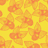 Seamless pattern with raspberry. In pink and yellow colors Stock Photography