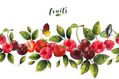 Seamless pattern of realistic berries Stock Image