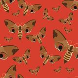 Seamless pattern. Realistic butterfly hawk on a red background. Insects in vector. stock illustration