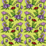 Seamless pattern with Realistic graphic flowers Stock Photography