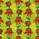 Seamless pattern with Realistic graphic flowers - daisyes - hand Royalty Free Stock Photo