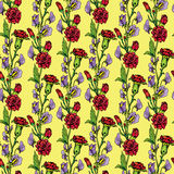 Seamless pattern with Realistic graphic flowers - sweet pea  Stock Images