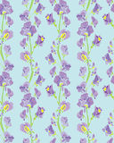 Seamless pattern with Realistic graphic flowers - sweet pea - ha Stock Photo