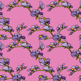 Seamless pattern with Realistic graphic flowers Royalty Free Stock Photos