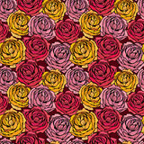 Seamless pattern with Realistic graphic Rose flowers - hand draw Royalty Free Stock Image
