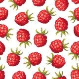 Raspberry seamless pattern Royalty Free Stock Image