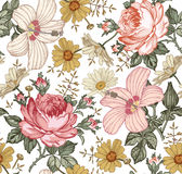 Seamless pattern. Realistic isolated flowers. Vintage background. Chamomile Rose hibiscus mallow. Wallpaper. Drawing engraving. Royalty Free Stock Photography