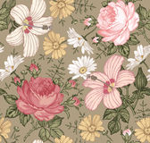 Seamless pattern. Realistic isolated flowers. Vintage background. Chamomile Rose hibiscus mallow. Wallpaper. Drawing engraving. Stock Photography