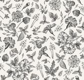 Seamless Pattern. Realistic Isolated Flowers. Vintage Background Petunia Primavera Hibisc Drawing Engraving Vector Royalty Free Stock Photos