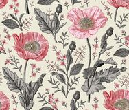 Free Seamless Pattern Realistic Isolated Flowers Vintage Background Poppy Croton Drawing Engraving Vector Fabric Illustration Royalty Free Stock Photography - 191181427
