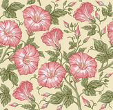 Seamless pattern. Realistic isolated flowers. Vintage baroque background. Petunia. Wallpaper. Drawing engraving. Vector Royalty Free Stock Photos