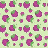 Seamless pattern of realistic raspberry image. Seamless pattern of realistic image of delicious ripe berries Royalty Free Stock Photos