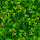 Seamless pattern with realistic Saint Patricks day shamrock leaves Stock Images