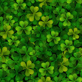 Seamless pattern with realistic Saint Patricks day shamrock leaves Stock Photo