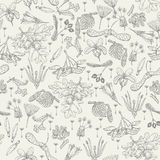 Seamless pattern with realistic seeds, plants, flowers in doodle design. Stock Image