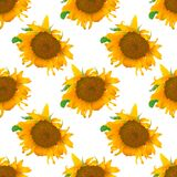 Seamless pattern with realistic sunflowers stock illustration