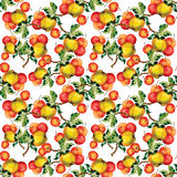 Seamless pattern with red apples and leaves. Vector illustration. Stock Images