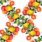 Seamless pattern with red apples and leaves. Vector illustration. Royalty Free Stock Photo
