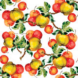 Seamless pattern with red apples and leaves. Vector illustration. Royalty Free Stock Images