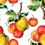 Seamless pattern with red apples and leaves. Vector illustration. Royalty Free Stock Image