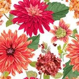 Seamless Pattern with Red Asters Flowers. Floral Background for Fabric Textile, Wallpaper, Wrapping. Watercolor Flowers. Design. Vector illustration stock illustration
