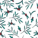 Seamless pattern with red berries, twigs and Royalty Free Stock Images