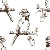 Seamless pattern. Red cardinal bird in Christmas cap. Vector seamless pattern Royalty Free Stock Photos
