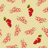 Seamless pattern with red currants Stock Photography